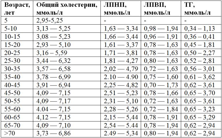 Нормы холестерина в крови у мужчин – таблица (по возрасту)