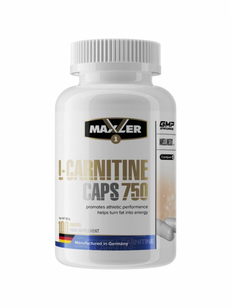 l карнитин холестерин