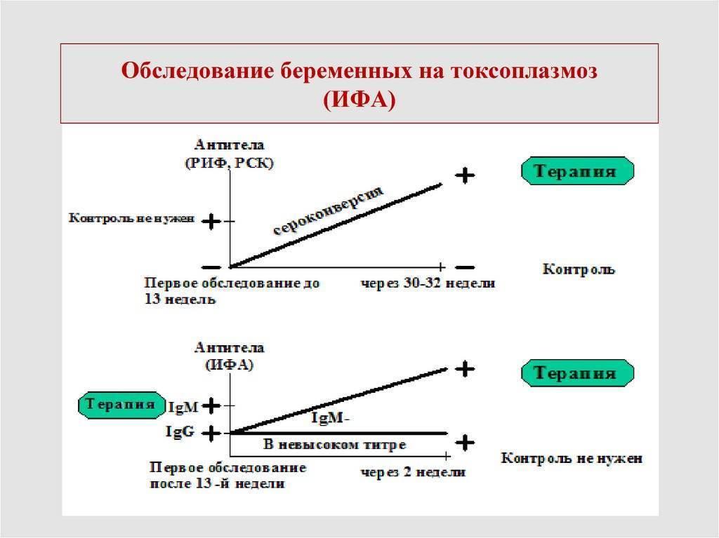 признаки токсоплазмоза у беременных женщин