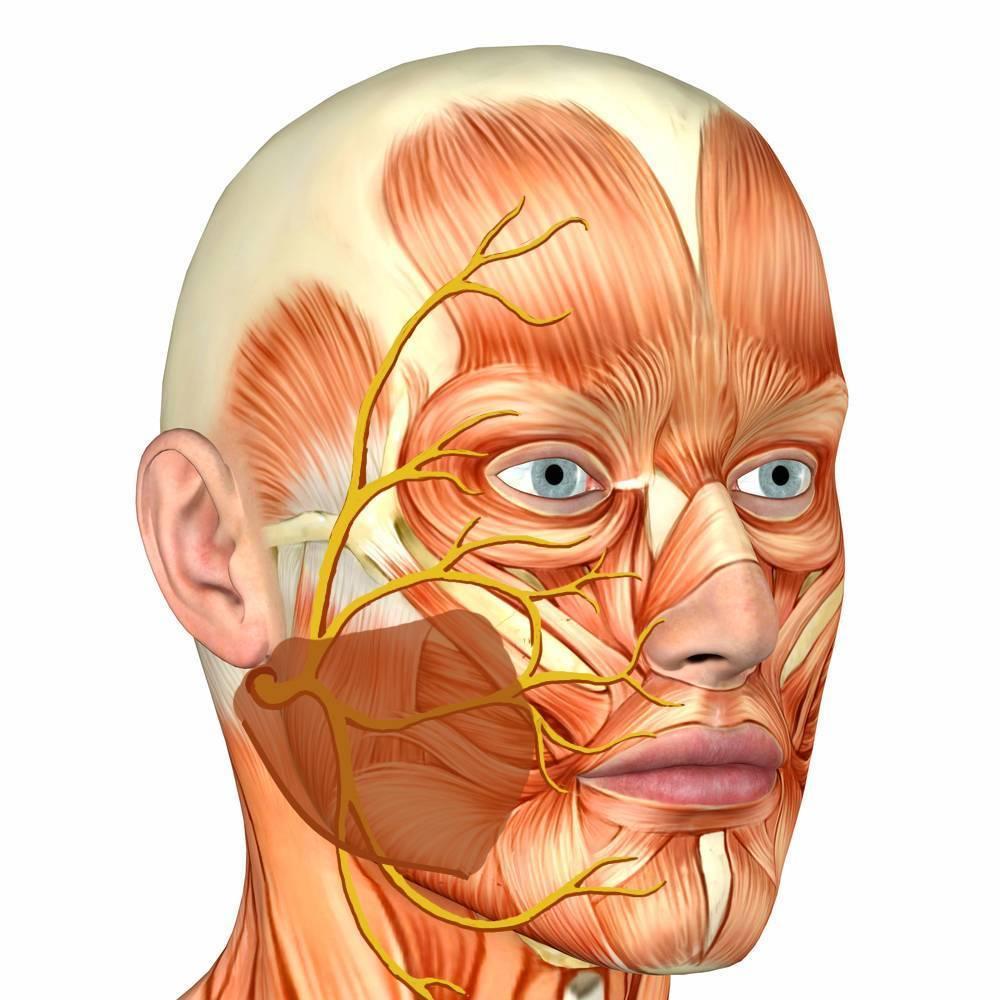 нейропатия лечение