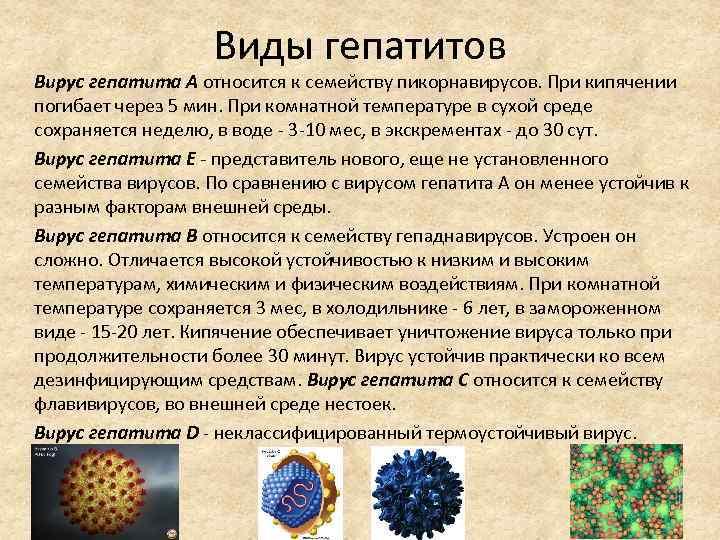 вирус гепатита сколько живет на воздухе