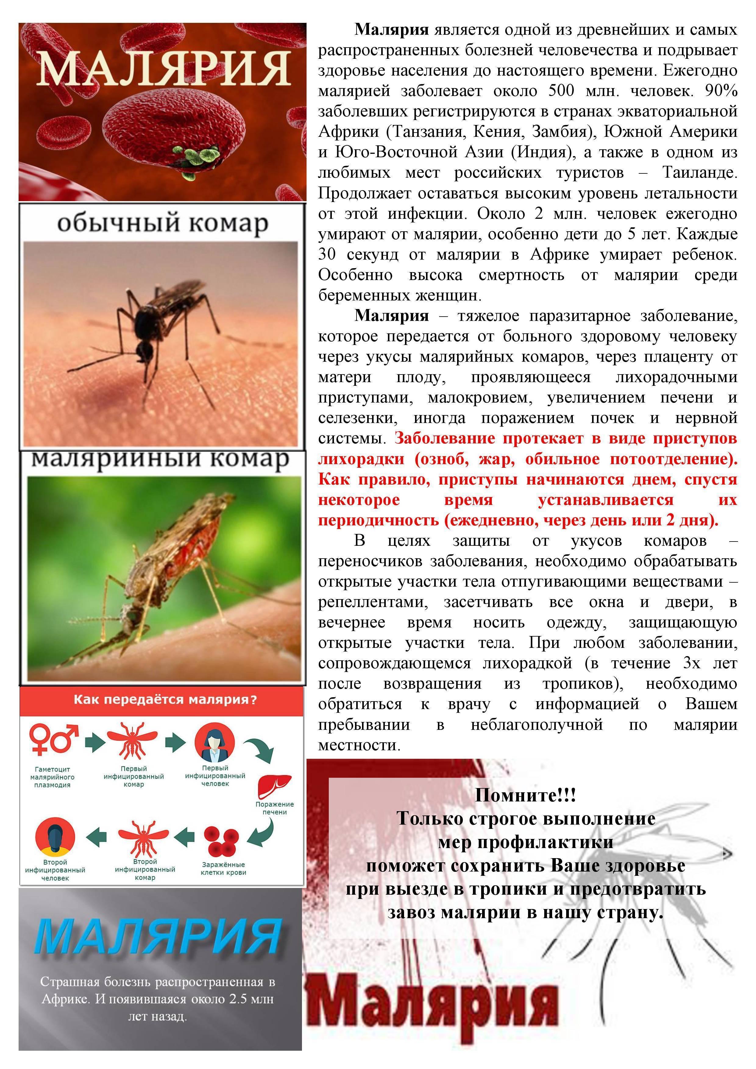 Все о малярии и ее лечении