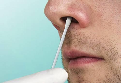 стафилококк в носу лечение в домашних условиях