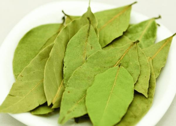 Лавровый лист для лечения гайморита