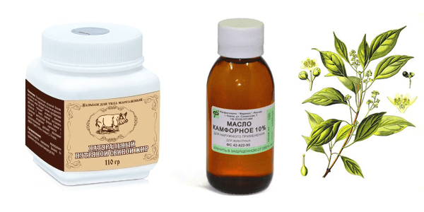 Камфорное масло при кашле и простуде