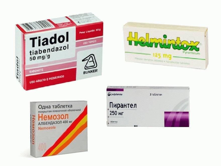 лекарство от аскарид
