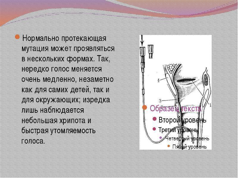 Воспаление гортани: симптомы и лечение | воспаление глотки