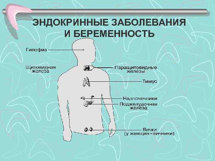 Основные эндокринологические синдромы.