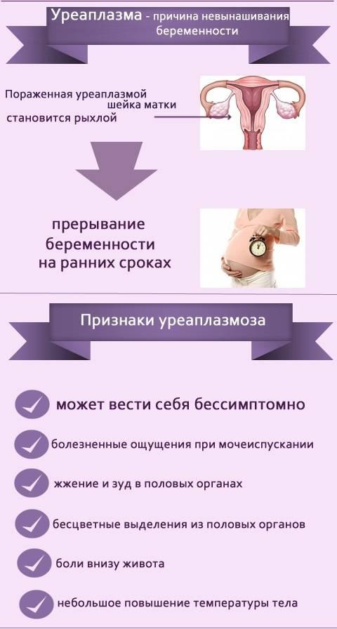 Схема лечения и препараты от уреаплазмоза у женщин