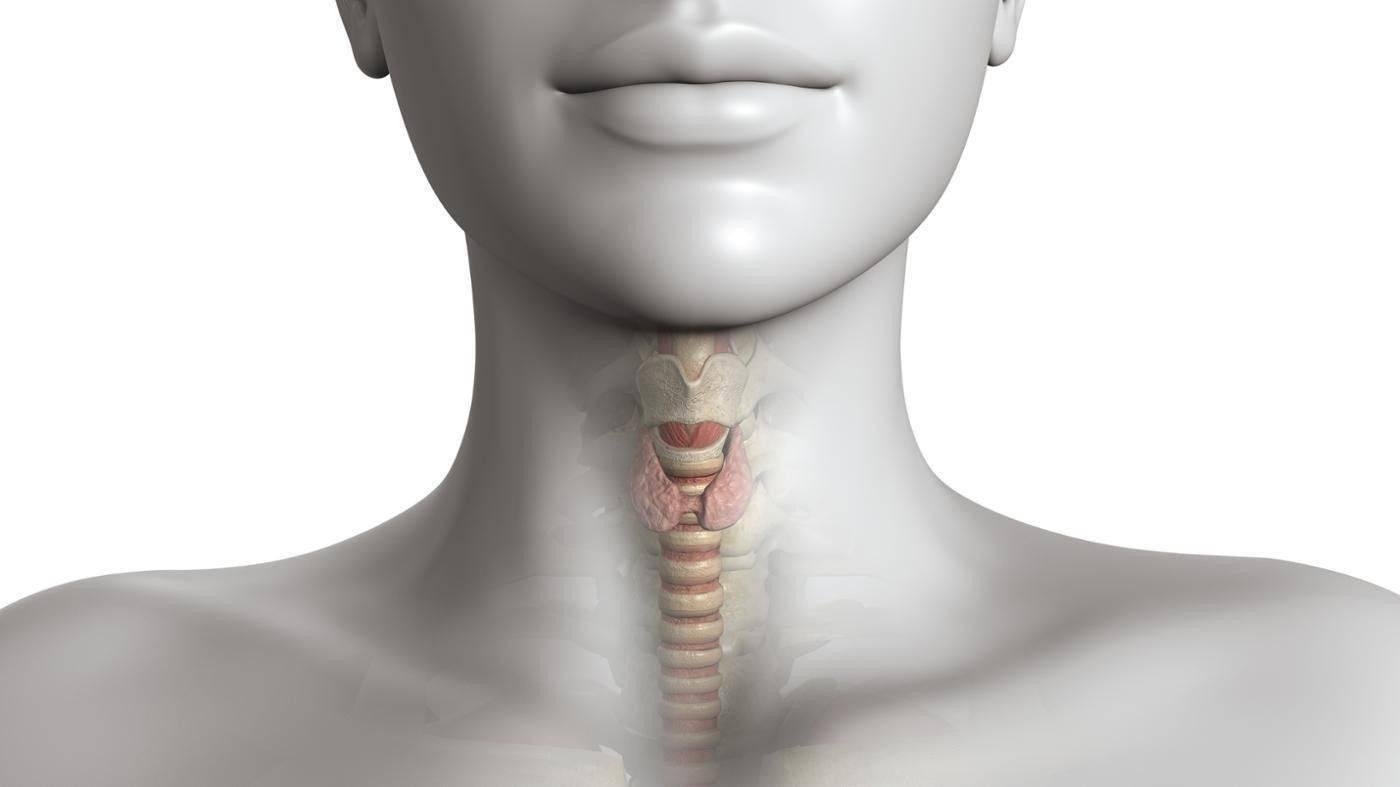 Узел щитовидной железы с кальцинатами при нормальных гормонах