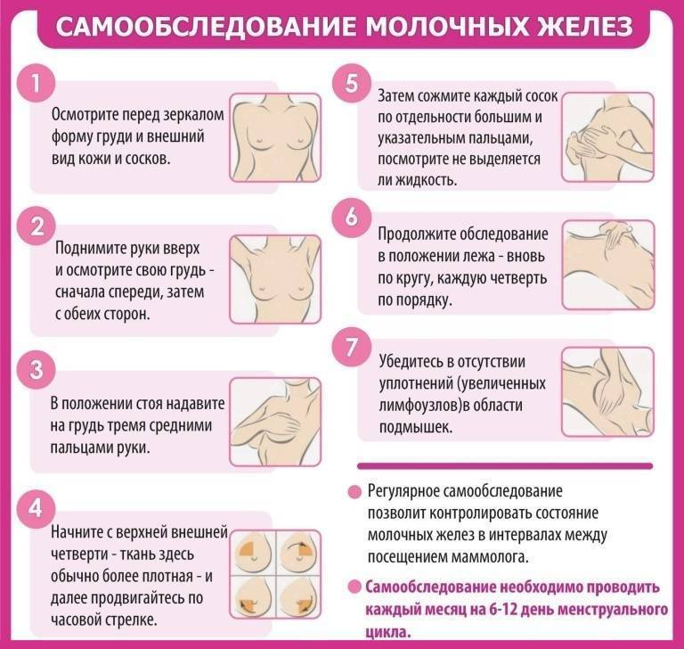 прием маммолога в какие дни цикла