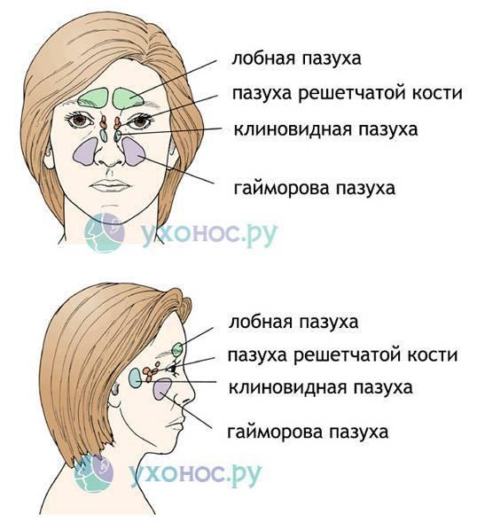 Что делать, если постоянно закладывает нос без насморка. как лечить