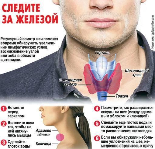 щитовидная железа признаки заболевания лечение