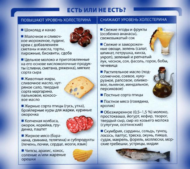 От чего повышается холестерин?