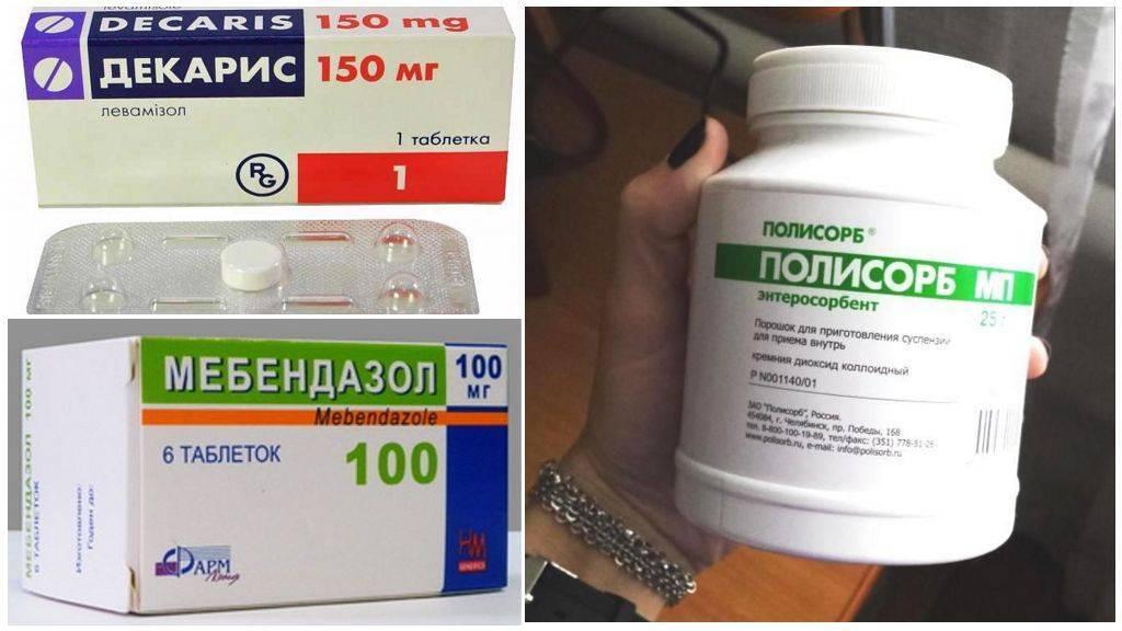 Лекарства для профилактики глистов у взрослых – что эффективно помогает?