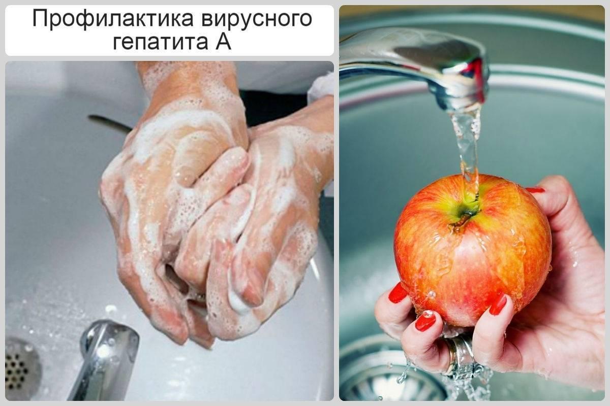профилактика гепатита а памятка
