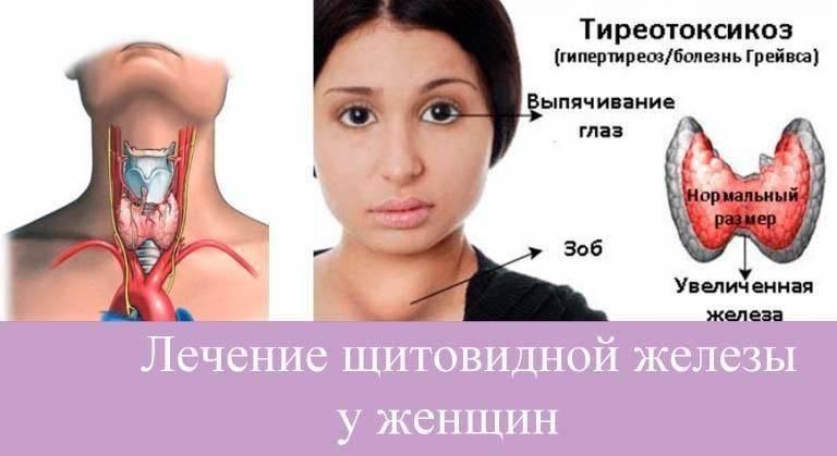 размер щитовидки у детей