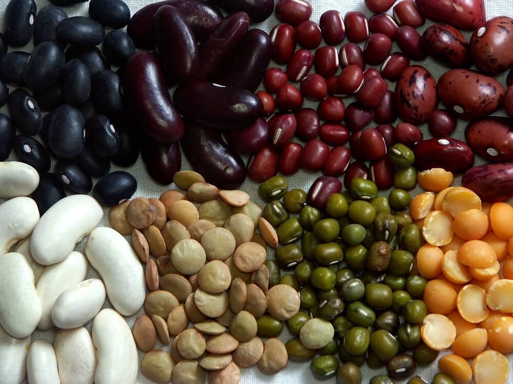 бобы от холестерина