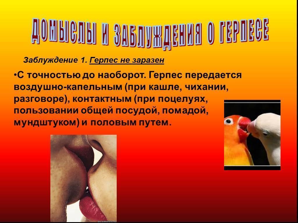 Всё про генитальный герпес: причины, симптомы и лечение
