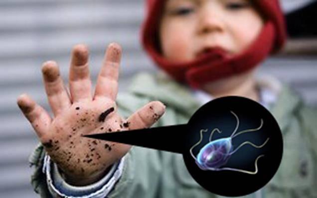 Лямблии, как лечить у детей