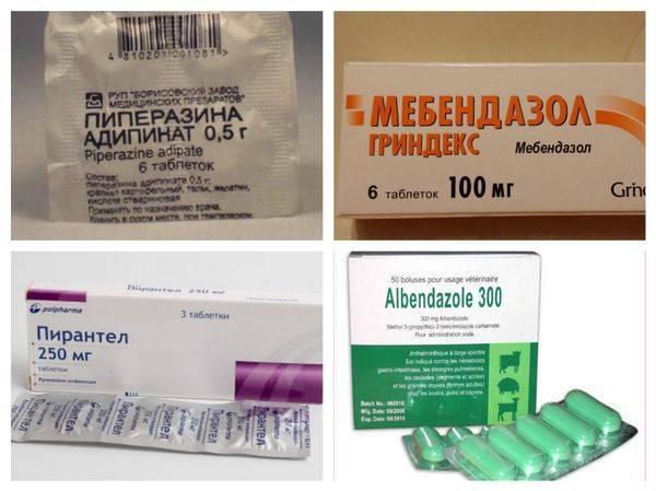 острицы лечение препараты