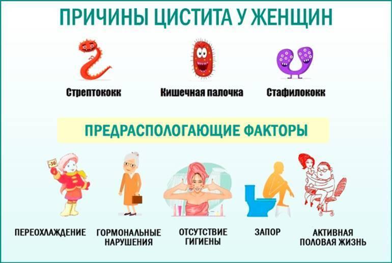 цистит у беременных лечение в домашних условиях