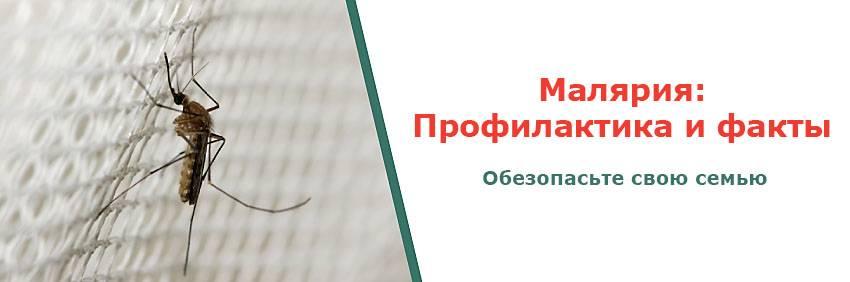 Эфффективные таблетки и лекарства от малярии