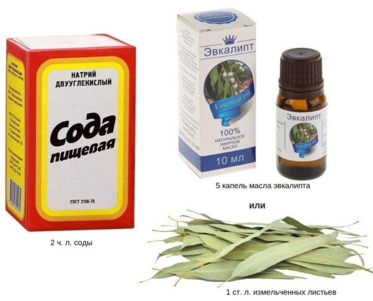Эфирное масло эвкалипта - ароматерапия эфирные масла