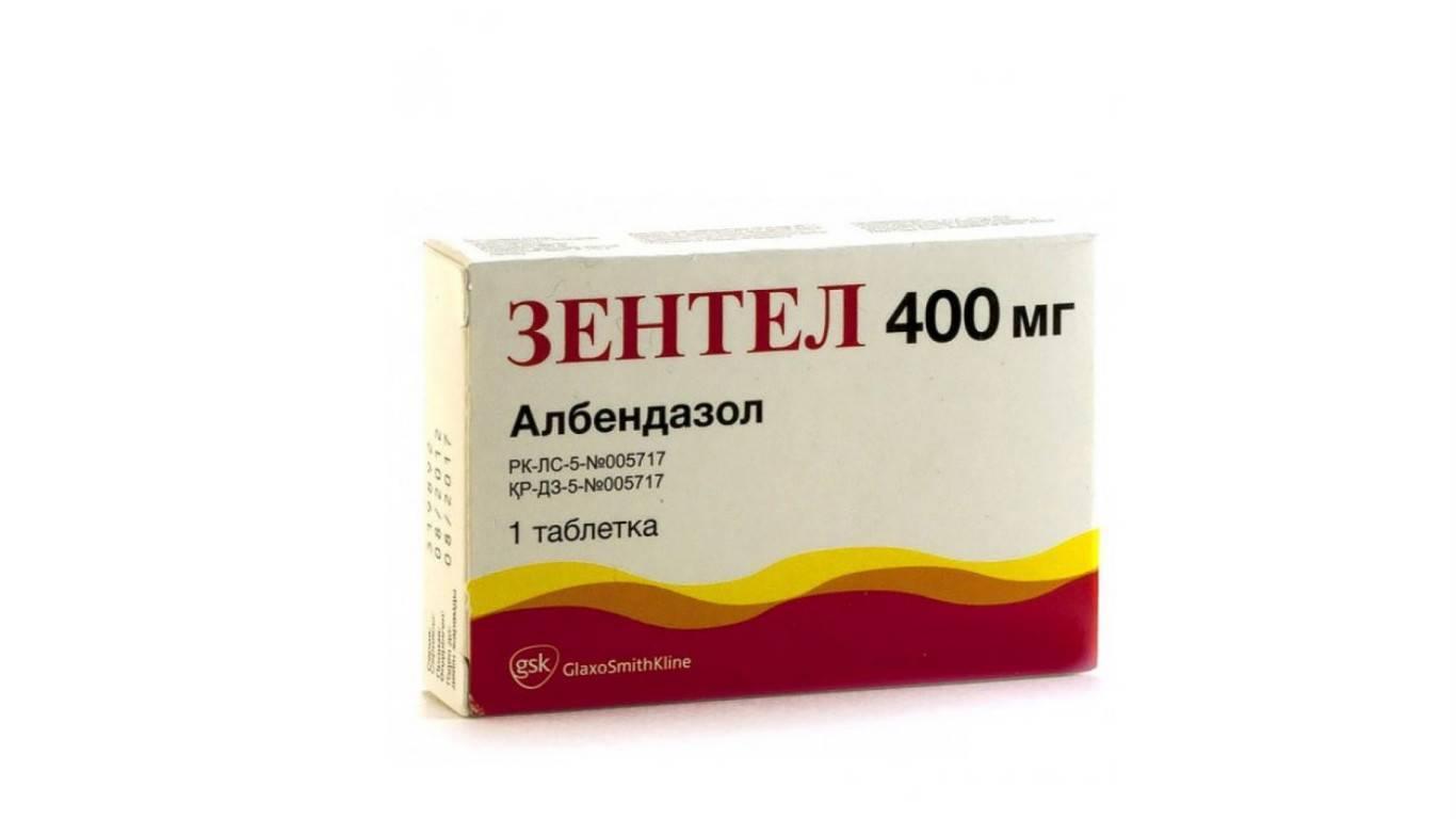 эффективные таблетки от глистов для человека