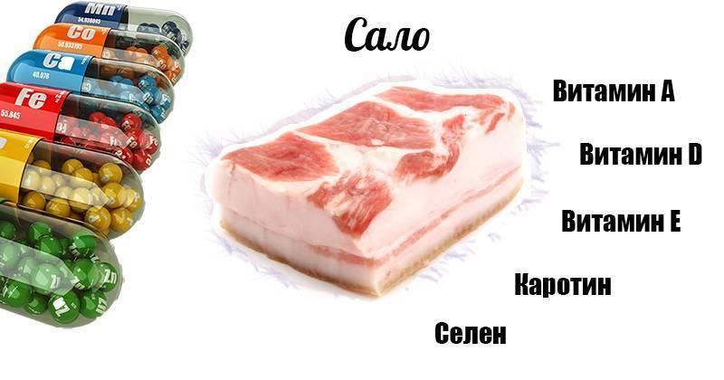 Сколько вредного холестерина содержится в свином сале