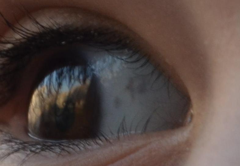 Вижу в глазу черную точку. в глазу появилась и бегает черная точка