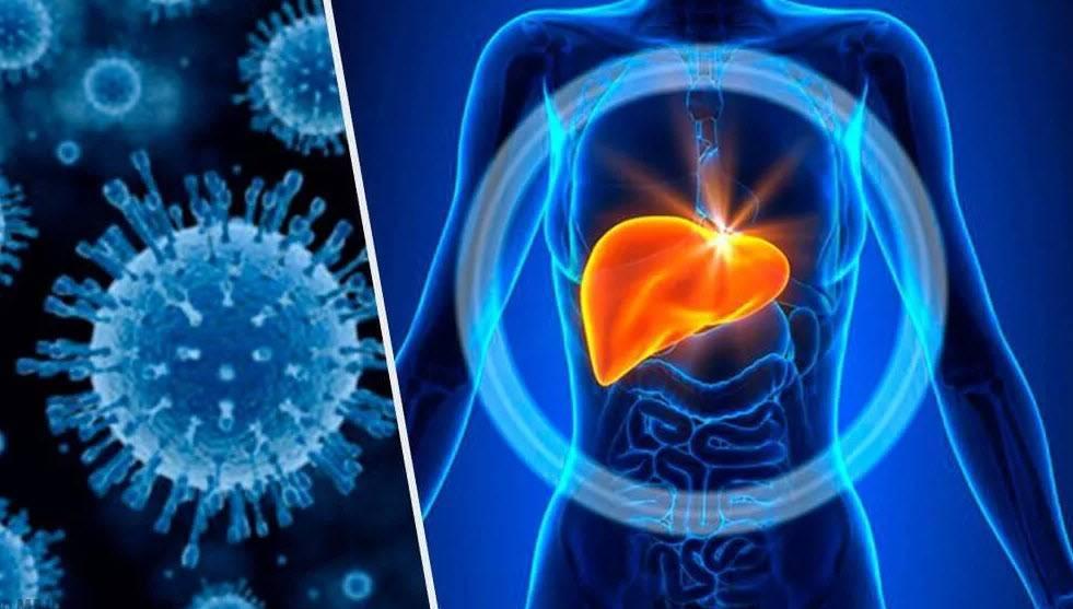 заболевание гепатит с