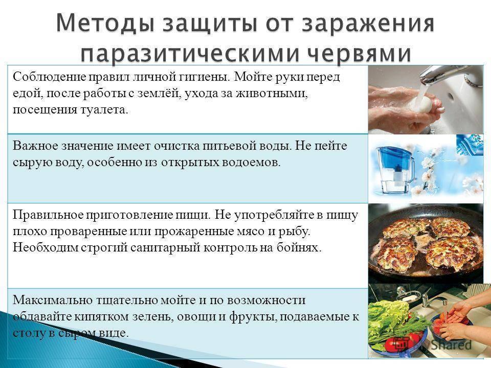 профилактика против паразитов у человека