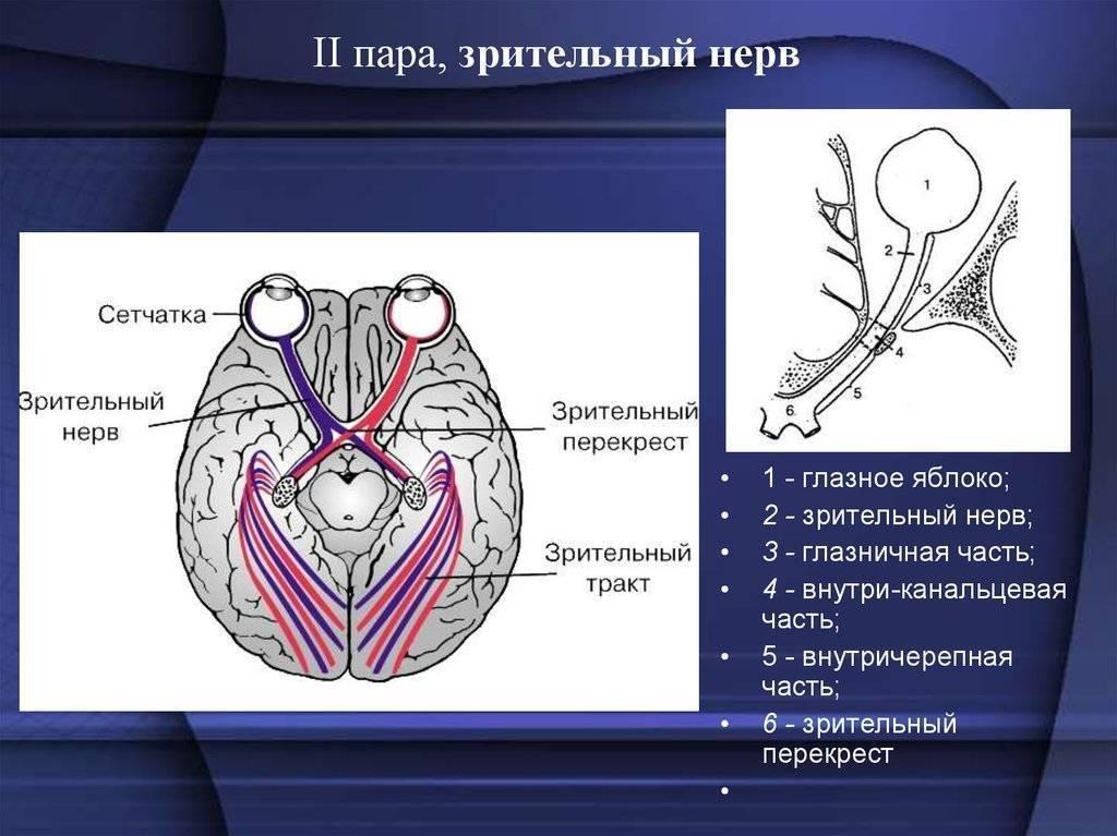 Лечение глаукоматозной атрофии зрительного нерва