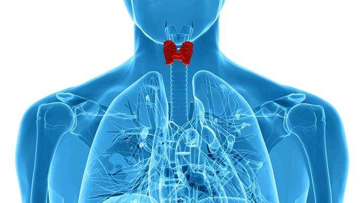 Рак трахеи: симптомы и стадии заболевания