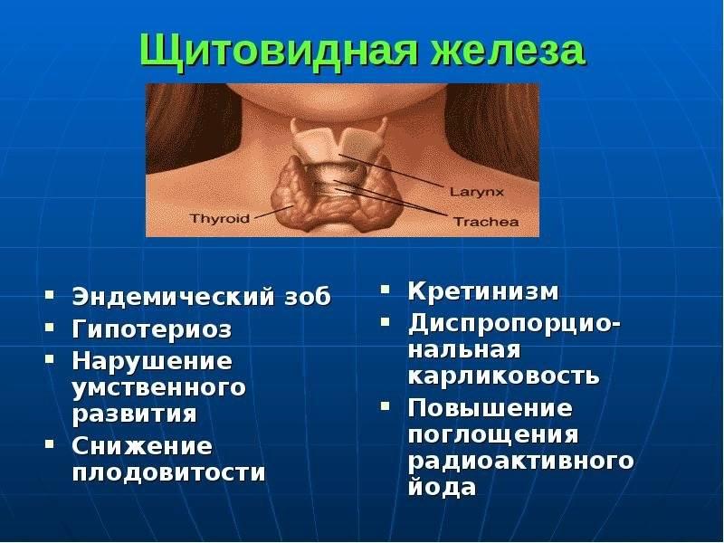 можно ли делать массаж при заболевании щитовидной железы