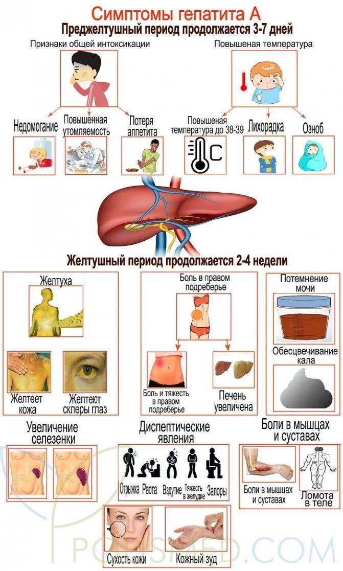 гепатит с обострение симптомы
