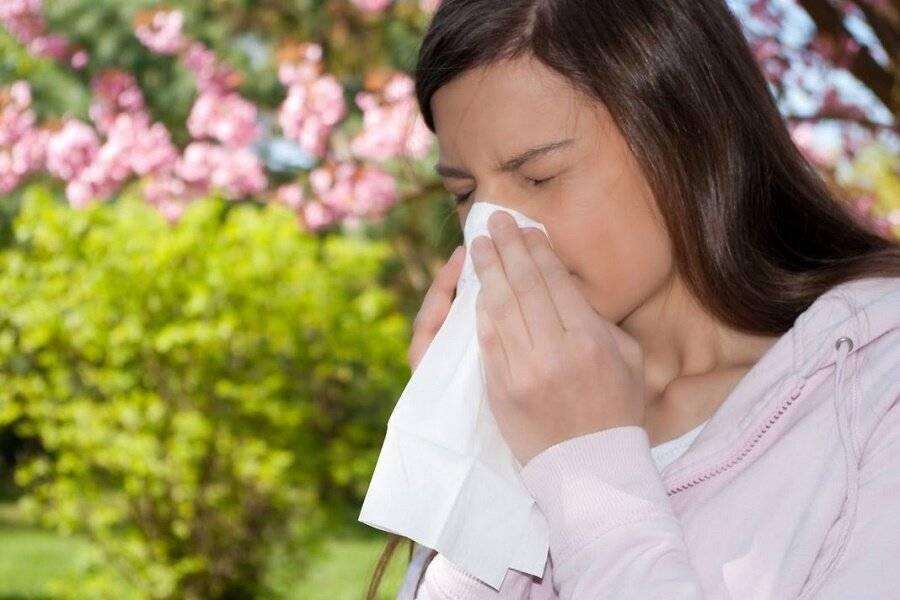 Как избавиться от аллергического насморка в домашних условиях: чем лечить?