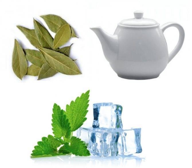 Способы лечения гайморита лавровым листом