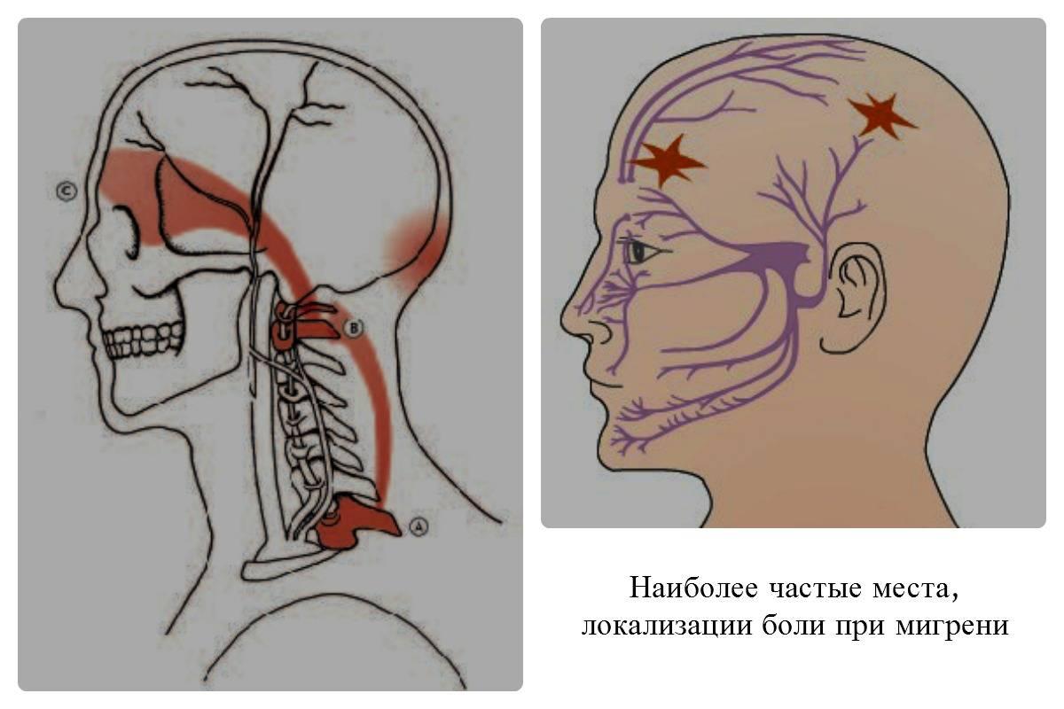 Почему немеет кончик носа: причины и лечение