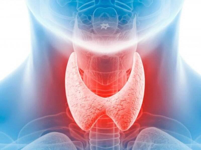 щитовидная железа и миастения связь