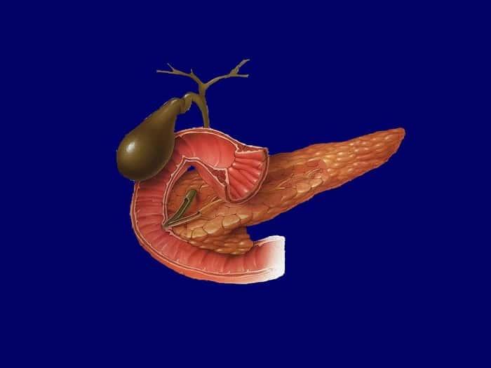 Признаки панкреатита и холецистита и его лечение