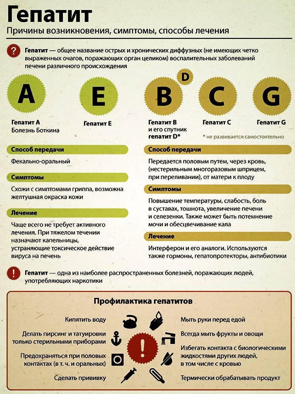 Гепатит а. причины, симптомы, признаки, диагностика и лечение патологии :: polismed.com