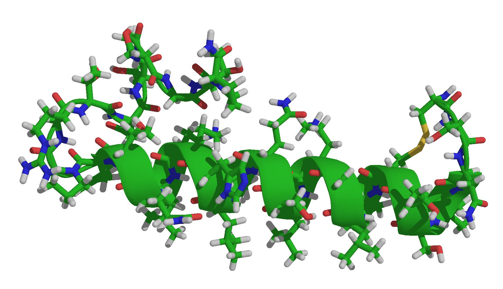 Кальцитонин: что это такое, норма гормона в организме, отклонения