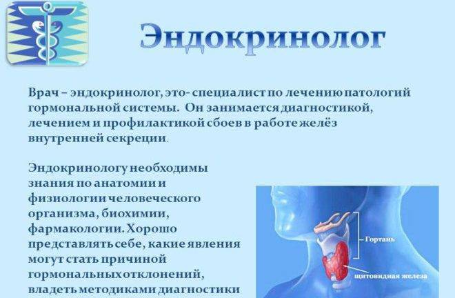 врач по щитовидке как называется
