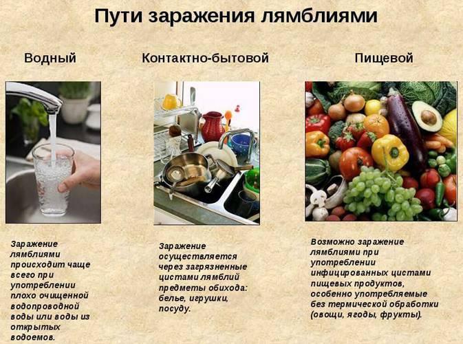 Диета, рациональное питание и примерное меню при лямблиозе у взрослых и детей