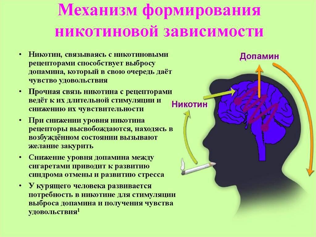 Никотиновая зависимость                (курение, табакозависимость, никотинизм, табачная зависимость)