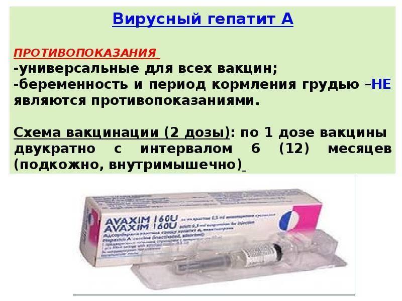 прививка гепатит а