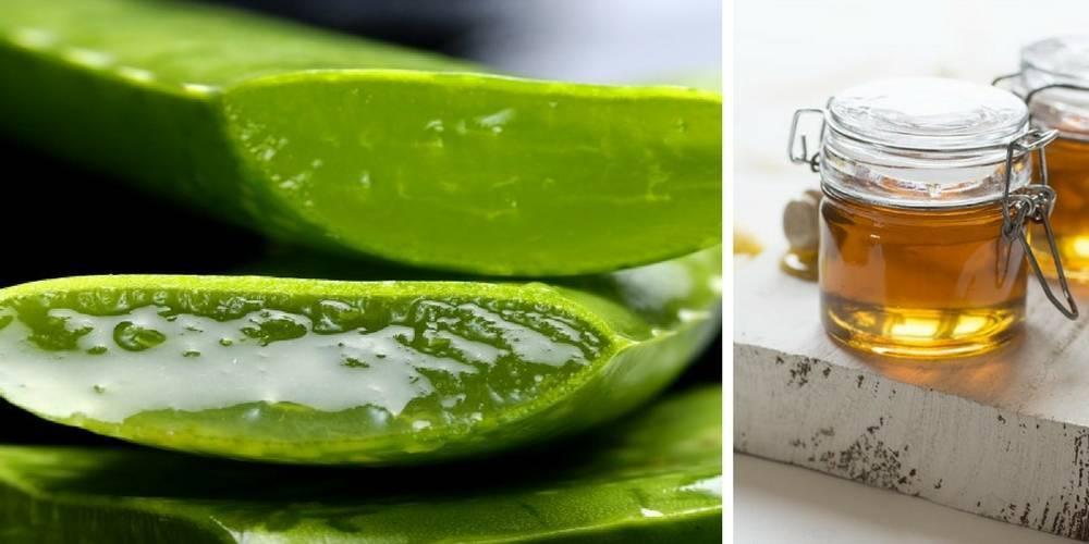 Народные средства — сок алоэ при простуде и кашле