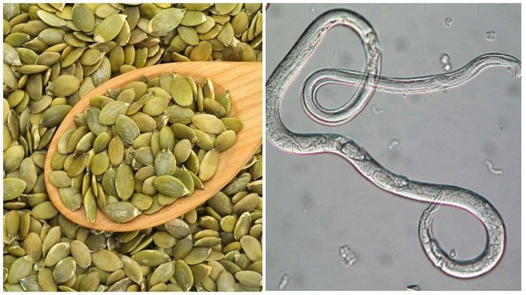 лечение от паразитов тыквенными семечками